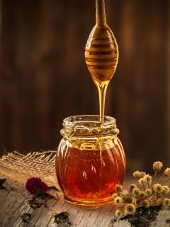honey-1958464